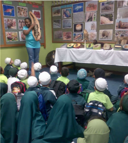 Nasrudin School - Port Elizabeth - Eastern Cape - Show Private